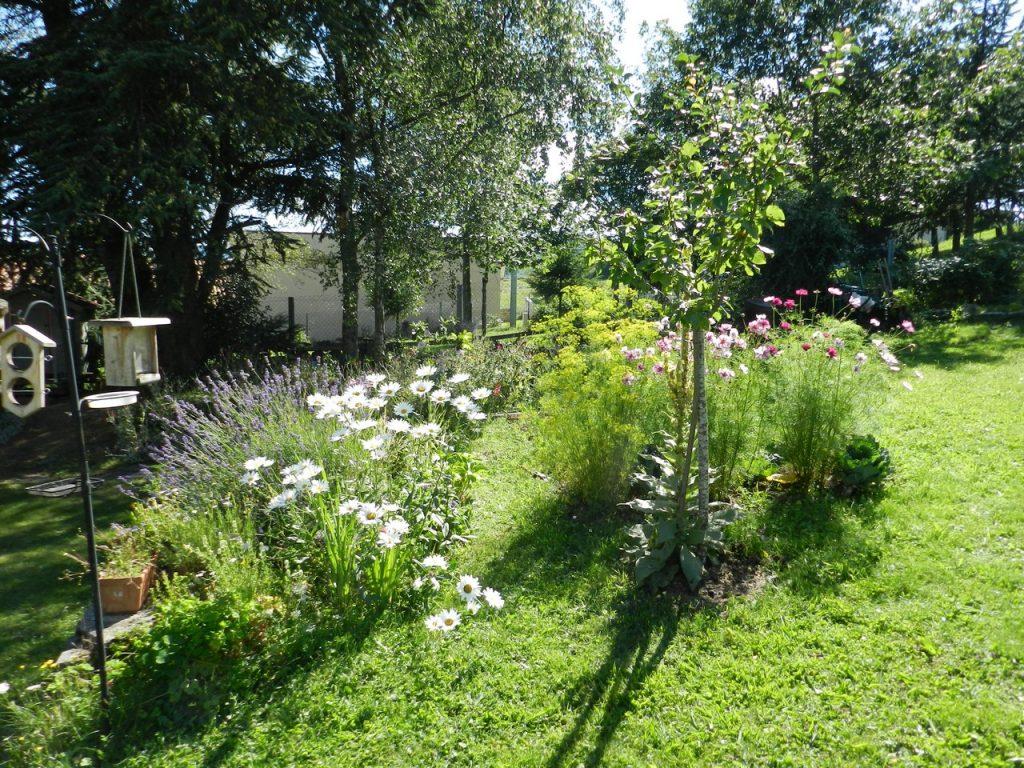 Auvergne-Volvic-Les-Ombelles-Jardin